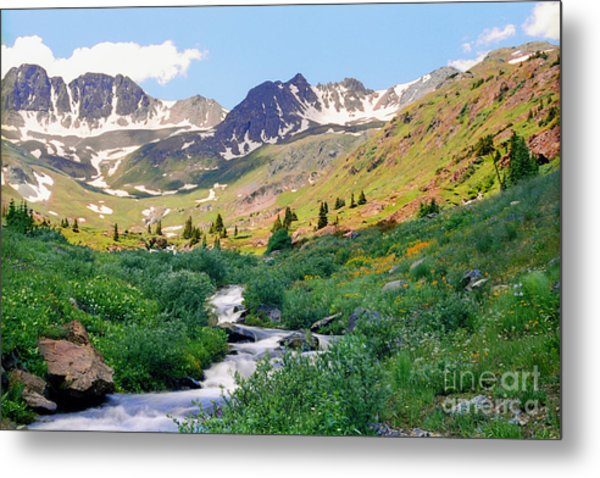 Alpine Vista With Wildflowers Metal Print