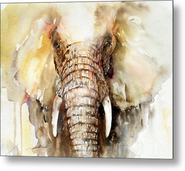 Amber Elephant Metal Print