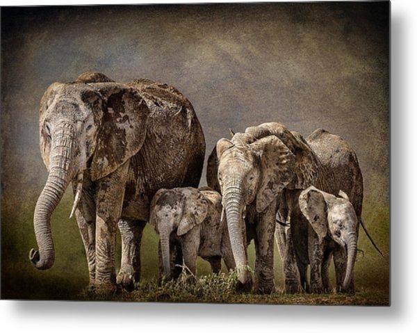 Amboseli Herd Metal Print