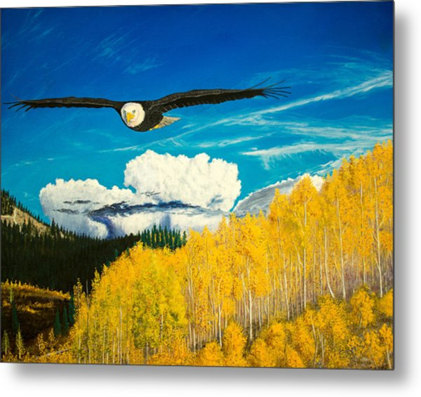 American Bald Eagle Original Oil Painting 16x20in Metal Print
