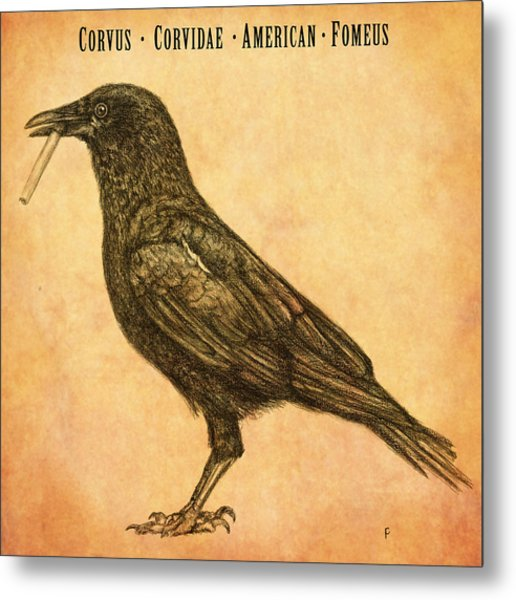 American Smoking Crow Metal Print