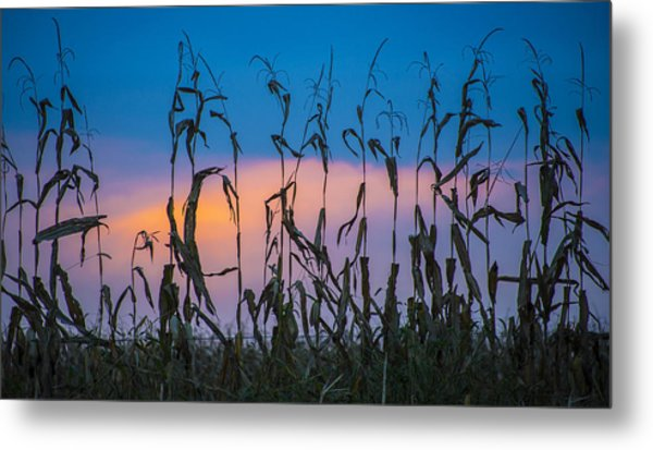 Amish End Of Harvest Metal Print by Bruce Neumann