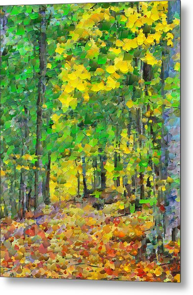 An October Walk In The Woods. 1 Metal Print