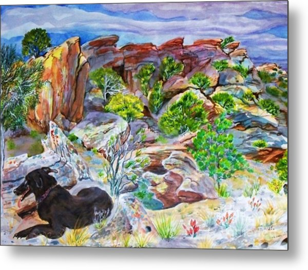 Ancient Camp Ground And Labrador Metal Print by Annie Gibbons