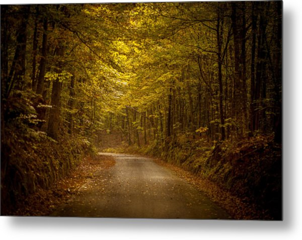 Country Road In Mississippi Metal Print