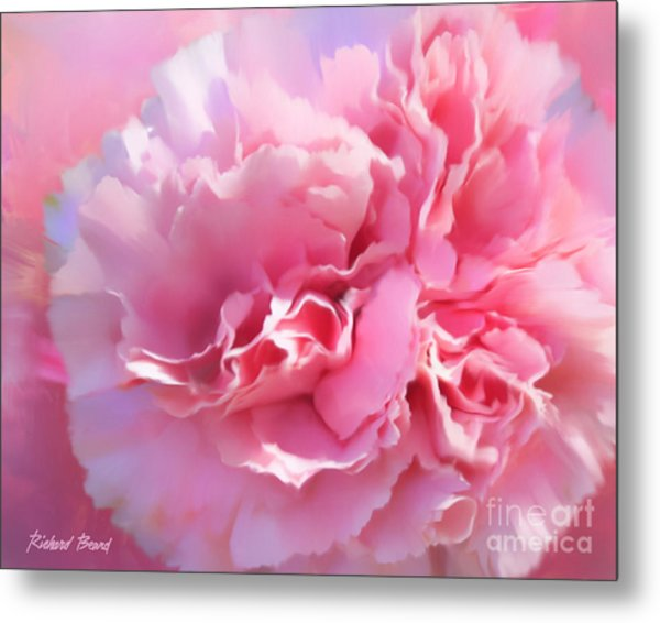 And A Pink Carnation Metal Print