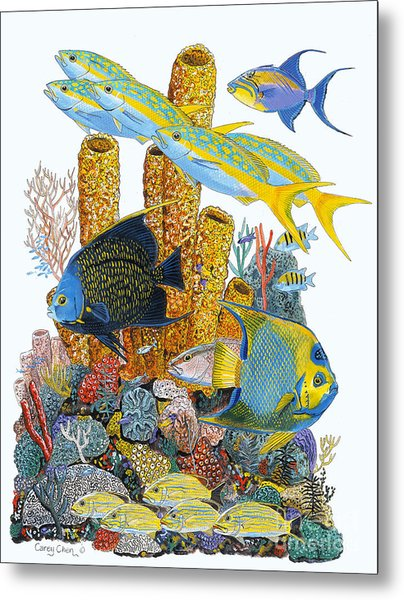 Angel Fish Reef Metal Print