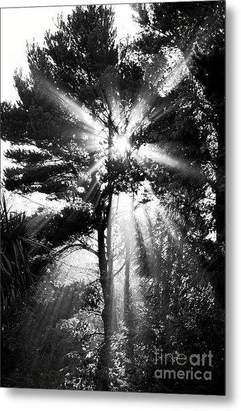 Angel Sun Metal Print