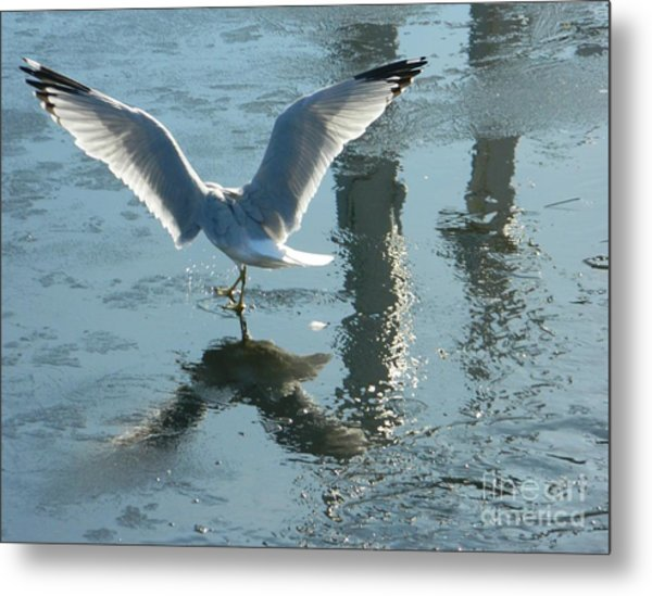 Angelic Wings Metal Print