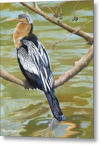 Anhinga Perched Metal Print