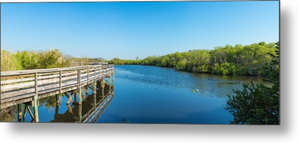 Anhinga Trail Boardwalk, Everglades Metal Print