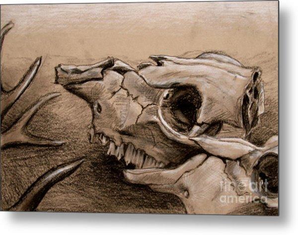 Animal Bones Metal Print