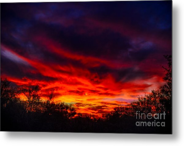 Another Tucson Sunset Metal Print