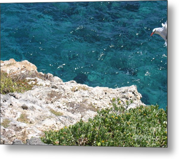 Antigua - Flight Metal Print