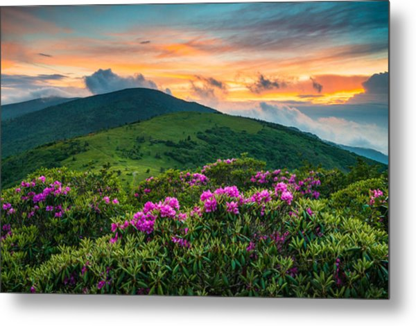 North Carolina Appalachian Trail Roan Mountain Highlands Metal Print