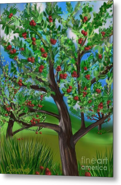 Apple Acres Metal Print
