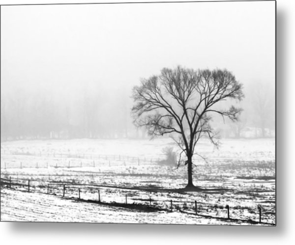 Approaching Fog Metal Print