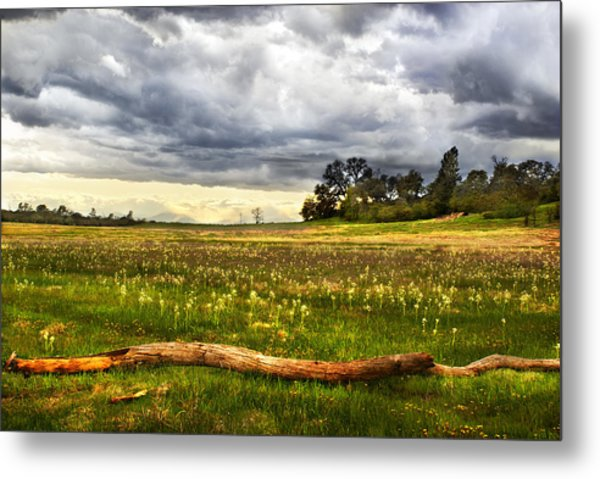 April Showers Bring May Flowers Metal Print