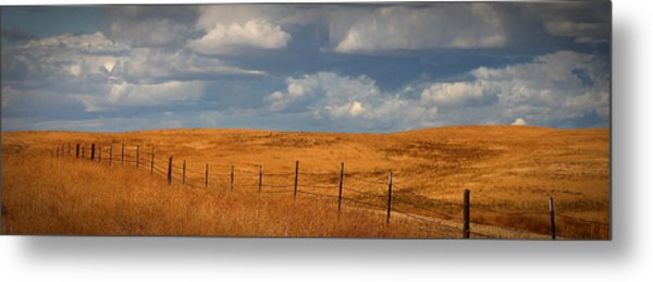 Arbuckle Fence Line Metal Print