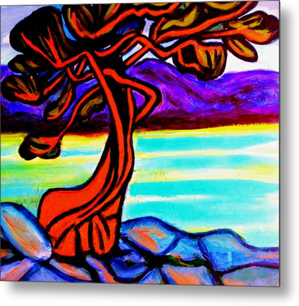 Arbutus Tree 1 Metal Print