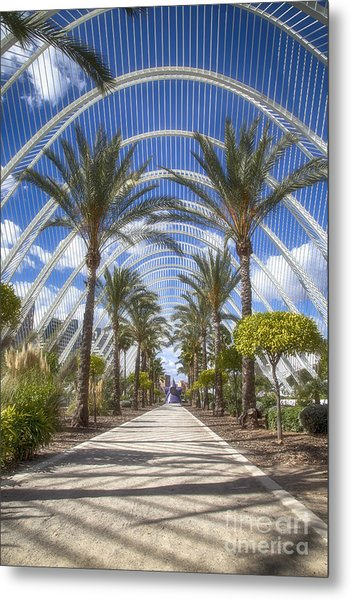 Arche With Palmtrees Metal Print