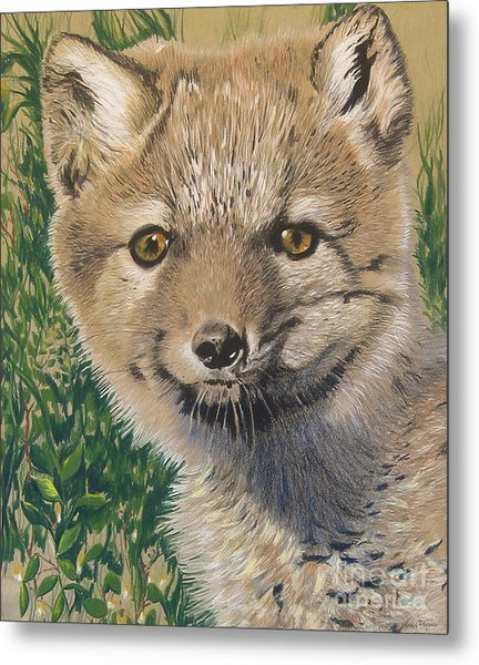 Sold Arctic Fox Metal Print