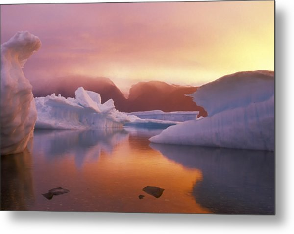Arctic Splendour Metal Print by Ralph Brunner