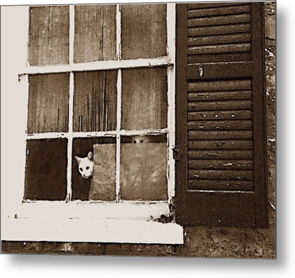 Are They Home Yet Metal Print by Wynn Davis-Shanks