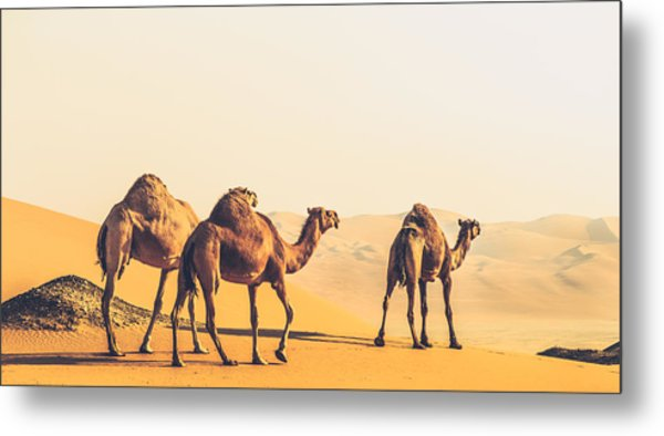 Are We Lost  Metal Print by Ahmed Rashed