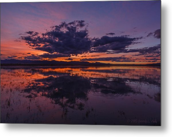 Arizona Beauty Metal Print