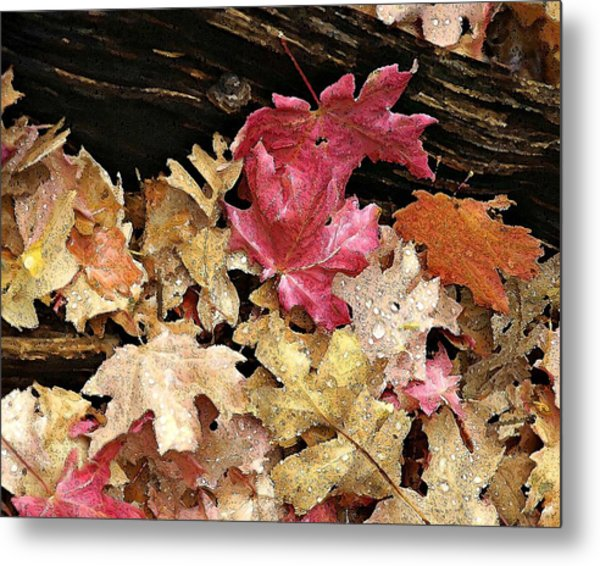 Arizona Fall Colors Metal Print