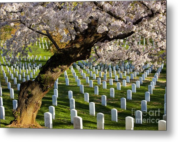 Arlington National Cemetary Metal Print