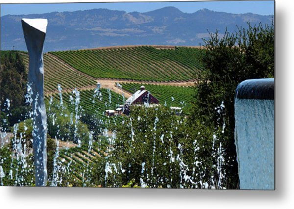 Artesa Vineyards And Winery Metal Print