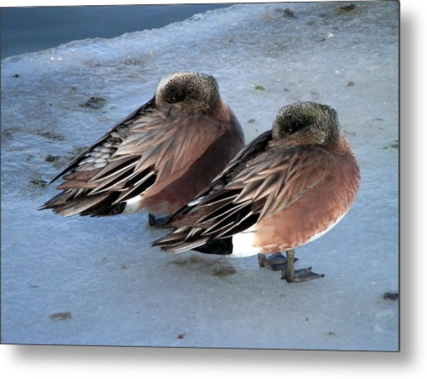 As Long As We Are Together Metal Print