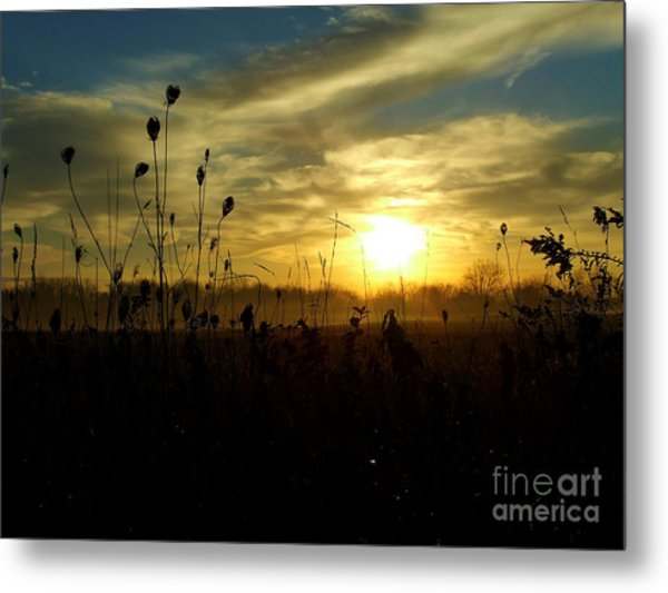 As Mist Rises II Metal Print