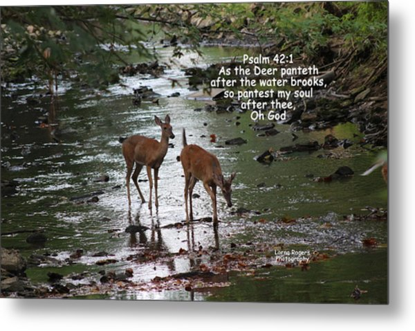 As The Deer Pants For Water Metal Print