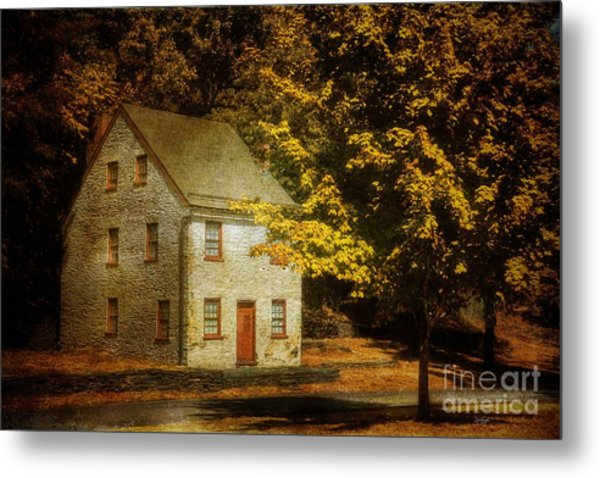 As The World Passes By Metal Print