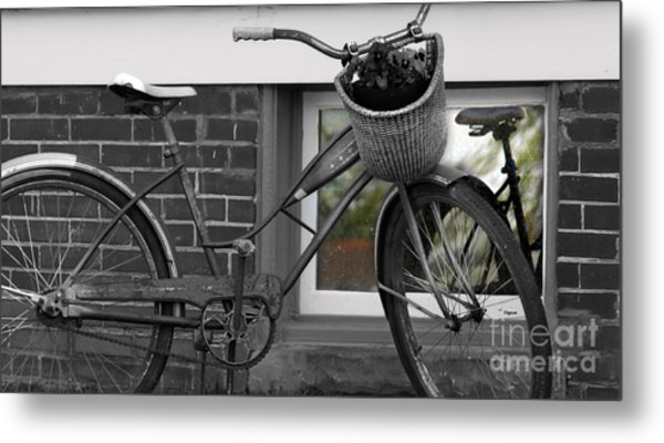 As Time Cycles Past Metal Print by Steven Digman