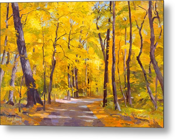 Ash Trees At Fall In The Morton Arboretum Metal Print
