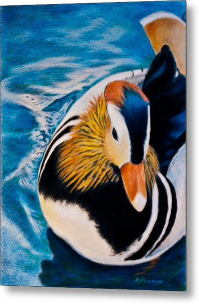 Mandarin Wood Duck Metal Print