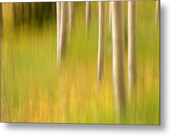 Aspen Abstract Metal Print