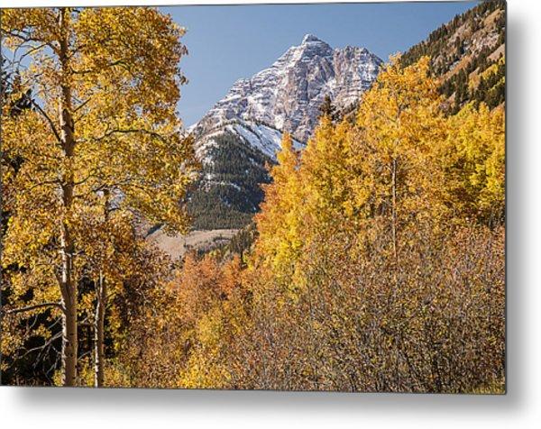 Aspen And Mountains 5 Metal Print