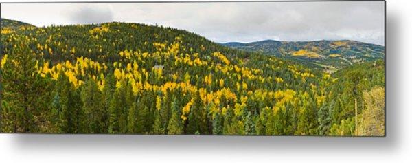 Aspen Hillside In Autumn, Sangre De Metal Print