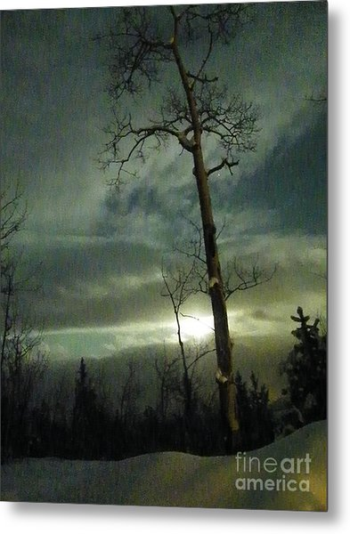 Aspen In Moonlight Metal Print