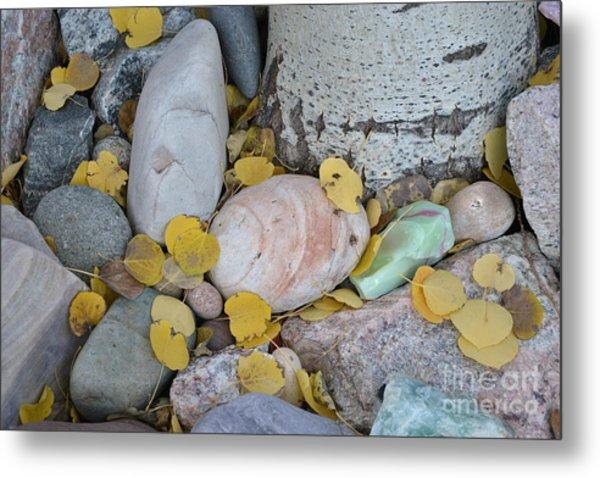 Aspen Leaves On The Rocks Metal Print