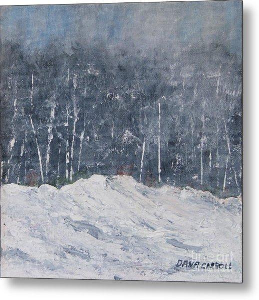 Aspen Ridge Blizzard Metal Print by Dana Carroll