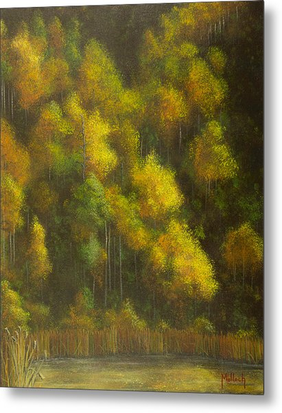 Aspens And Cattails Metal Print