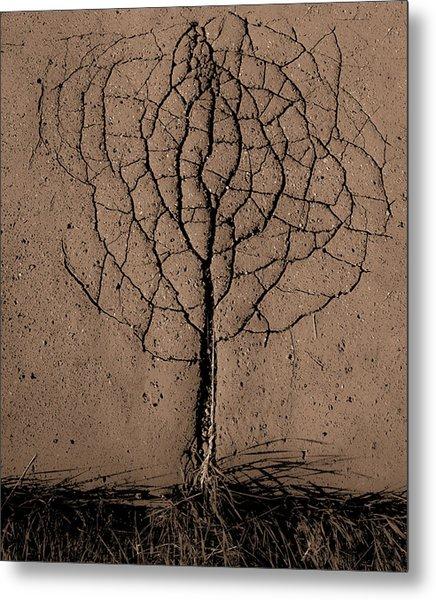 Asphalt Tree Metal Print