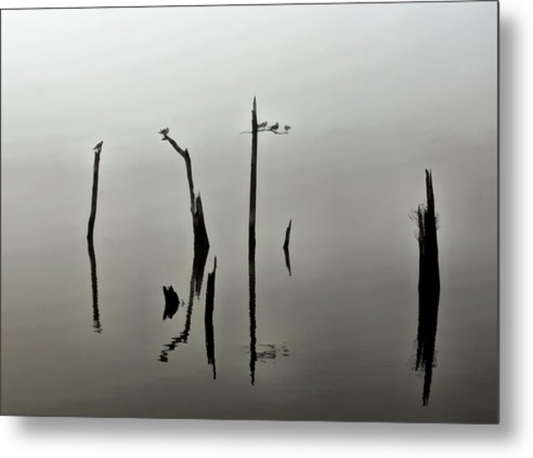 At Dusk Metal Print by James Stough