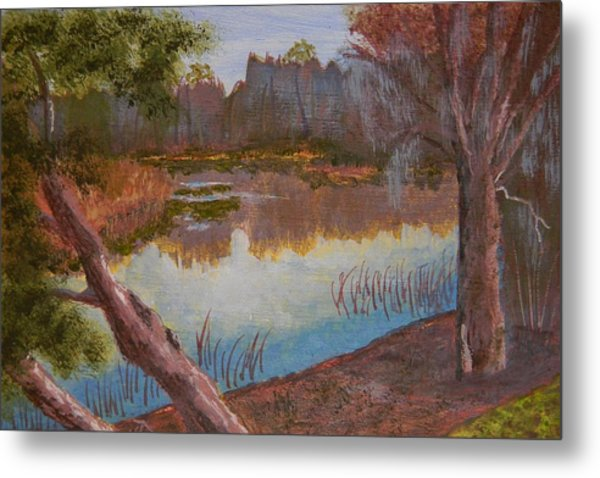 At The Bend On The Ocklawaha  Metal Print by Warren Thompson